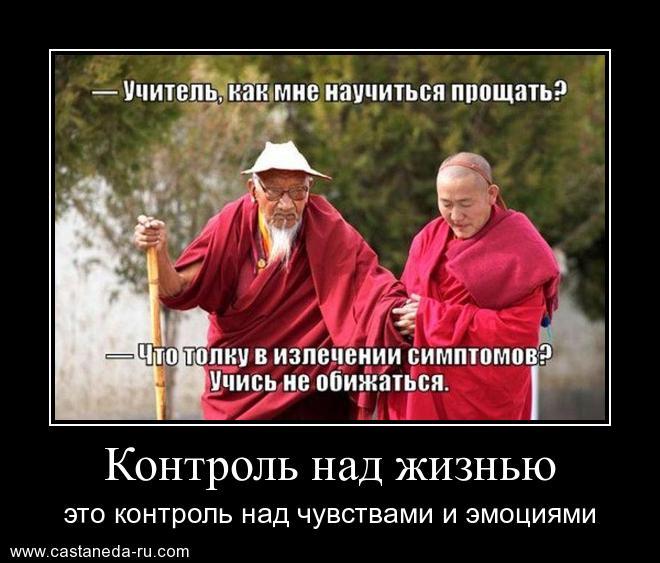 https://i6.imageban.ru/out/2021/07/17/369556218b1ae49e42713397a7f5056d.jpg