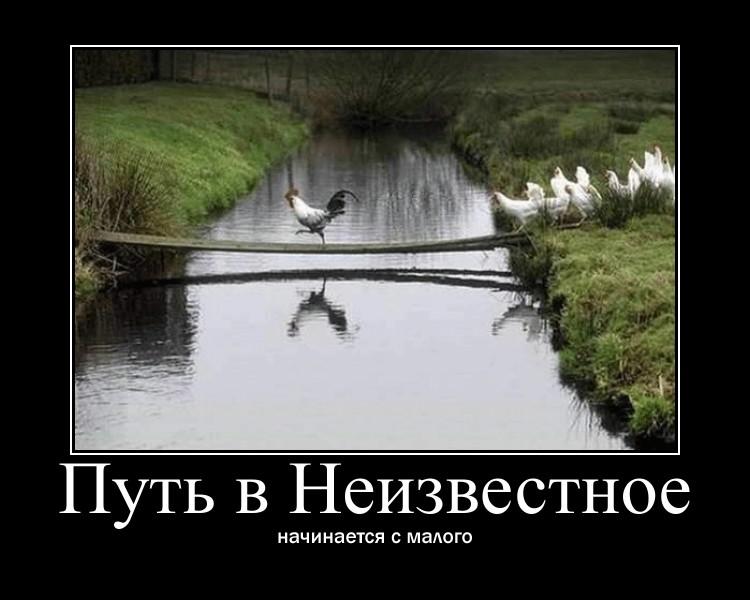 https://i6.imageban.ru/out/2021/07/17/396be9dd900b0719186e1b15125c8d59.jpg