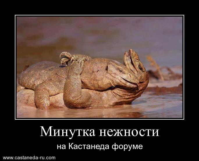 https://i6.imageban.ru/out/2021/07/17/3e76f57cfb968b88cb12243d8f417338.jpg