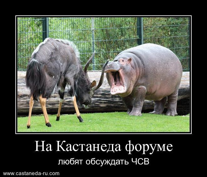 https://i6.imageban.ru/out/2021/07/17/3fa546efbc544b2585c46fbe0ab39b66.jpg