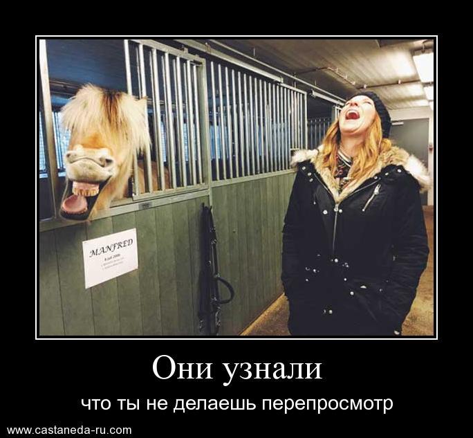https://i6.imageban.ru/out/2021/07/17/409b1ba13ee70b17c2f2ff0918141114.jpg