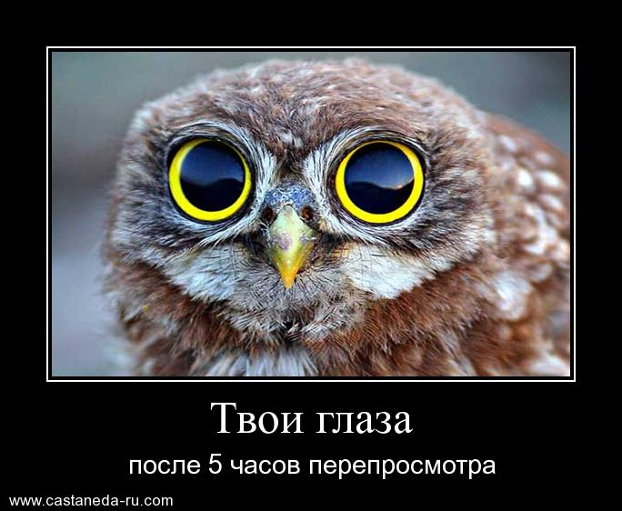 https://i6.imageban.ru/out/2021/07/17/4453572d1209dd24bc9400b4f49e42fd.jpg