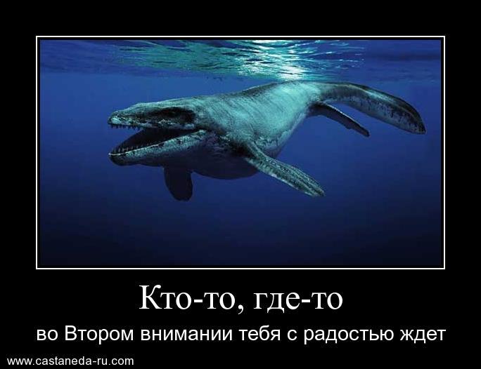 https://i6.imageban.ru/out/2021/07/17/4b52aa91a217a49ef5f59e33f22d8dea.jpg