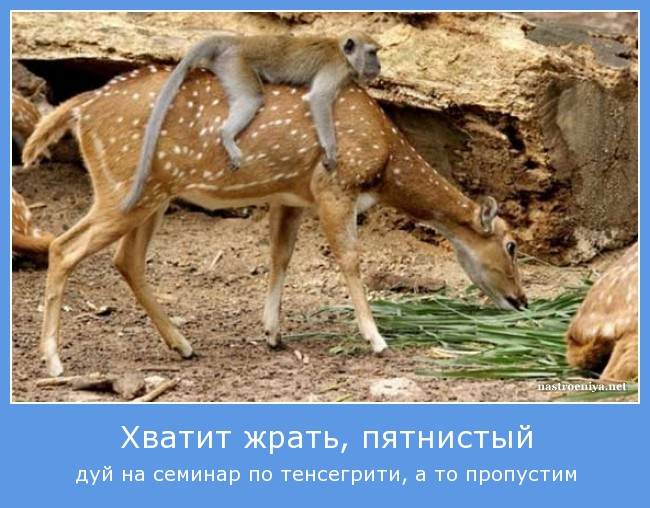 https://i6.imageban.ru/out/2021/07/17/4b8771edf137a2505a4181cf2cf24dde.jpg