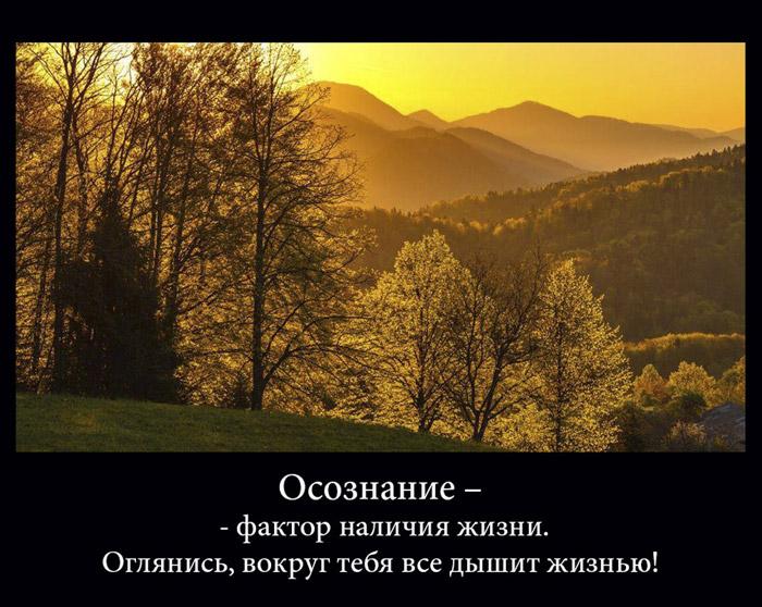 https://i6.imageban.ru/out/2021/07/17/4bec0efc2efeab116794ea4a8b073302.jpg
