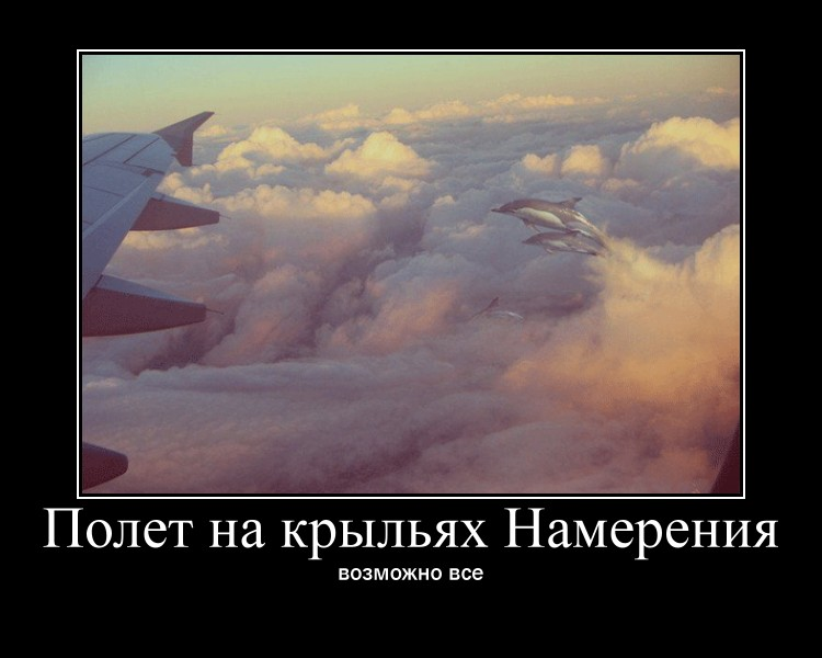 https://i6.imageban.ru/out/2021/07/17/520bd507bbfb213f9e27c07e6b22dc11.jpg