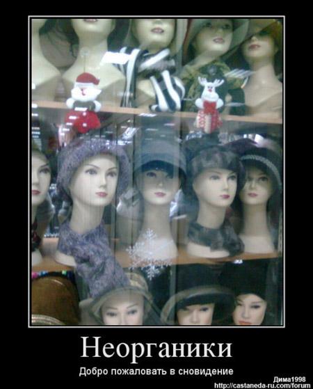 https://i6.imageban.ru/out/2021/07/17/55619b03d2611cb66e3be099b7fd940d.jpg
