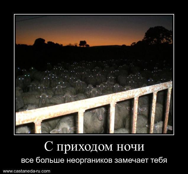 https://i6.imageban.ru/out/2021/07/17/556e49ab428204f3eadcb86d836ec641.jpg