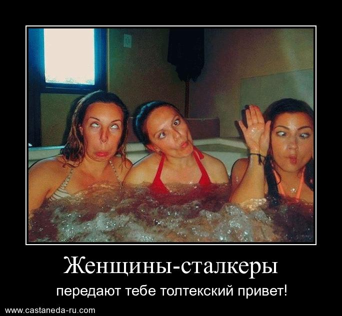 https://i6.imageban.ru/out/2021/07/17/56cfbf6af05569e88c32cb95550b7a18.jpg