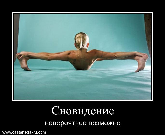https://i6.imageban.ru/out/2021/07/17/5bd33b25e56e347895d59da28e95bd64.jpg