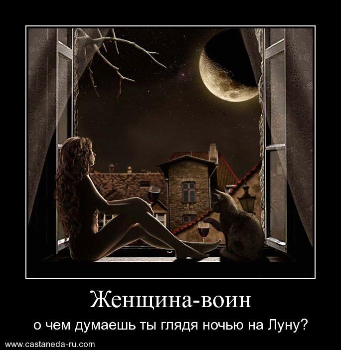 https://i6.imageban.ru/out/2021/07/17/5dfb9c6524bc4d7953560cb26c550d65.jpg