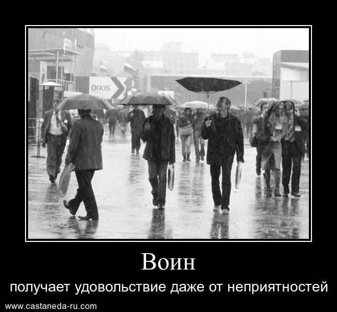 https://i6.imageban.ru/out/2021/07/17/61d1acbca586d22981c87e41d4b4073d.jpg