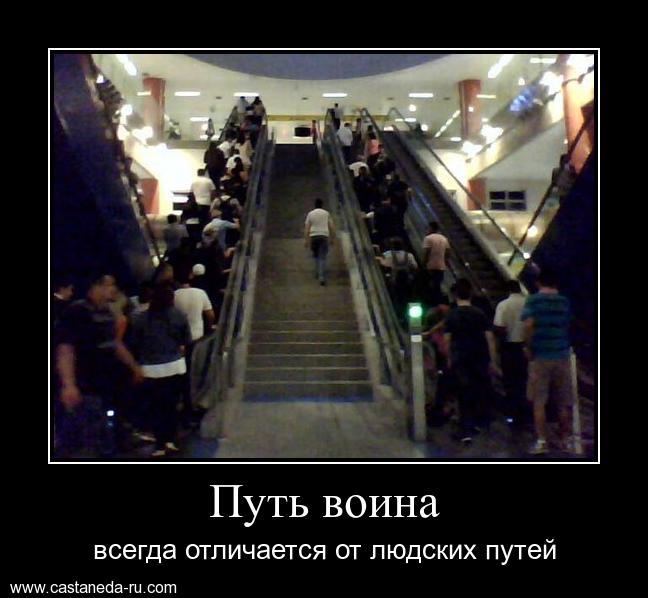 https://i6.imageban.ru/out/2021/07/17/646b5046f55adab3c869294a3cbfd8a2.jpg