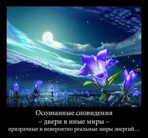 https://i6.imageban.ru/out/2021/07/17/66f2d19b55614dc8c5dbe9aa8a4b12ee.jpg