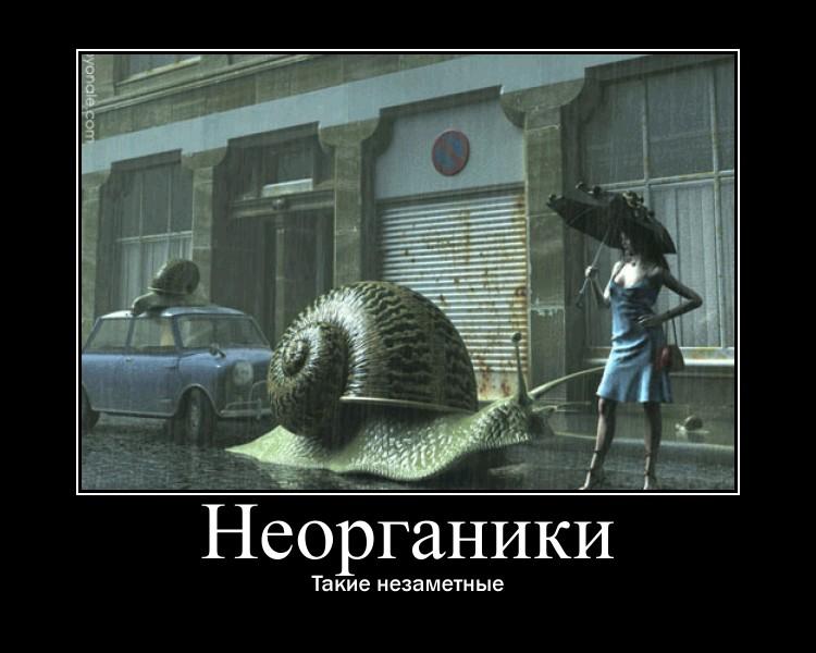 https://i6.imageban.ru/out/2021/07/17/6a13de8550fd9421b5754bbc60c563e6.jpg