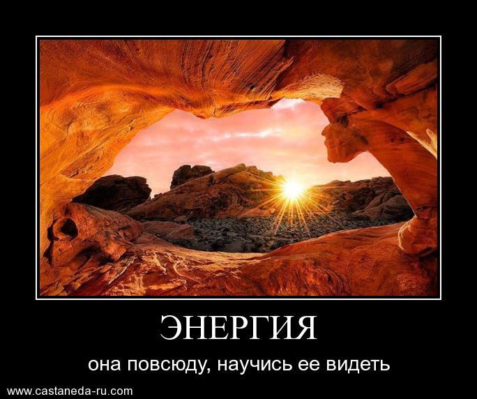 https://i6.imageban.ru/out/2021/07/17/7542eeecd157649a660360e810a271b5.jpg