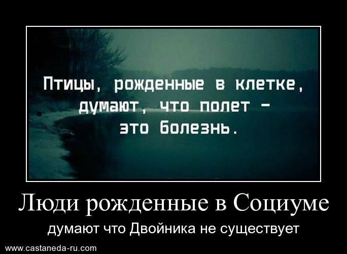 https://i6.imageban.ru/out/2021/07/17/76e6eb9cb5117fd2f754f03a32de05e8.jpg