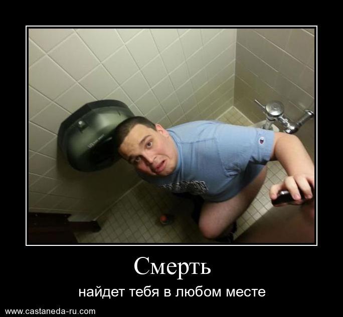 https://i6.imageban.ru/out/2021/07/17/7e3dbd81daa298fa188b02b3aadc13a7.jpg