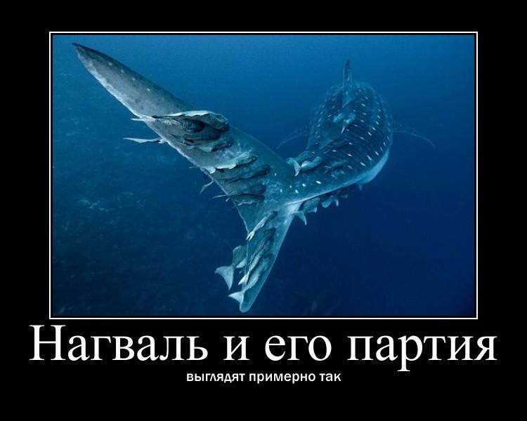 https://i6.imageban.ru/out/2021/07/17/836d2f8fe70f4d353b000715365a906e.jpg