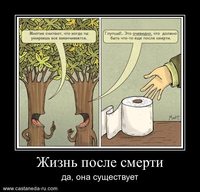https://i6.imageban.ru/out/2021/07/17/8c41b8b3aaf17409f44327c023206e51.jpg