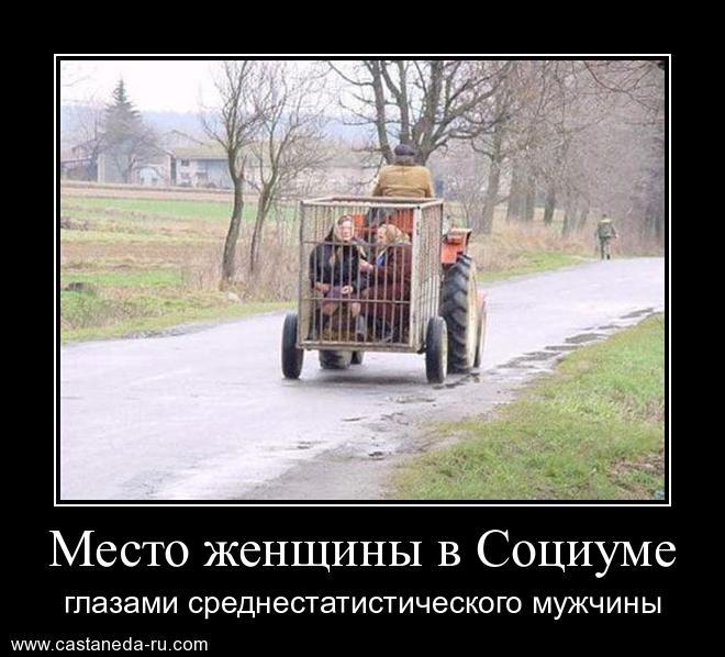https://i6.imageban.ru/out/2021/07/17/92c9652678fc5a00001127c7524549a7.jpg