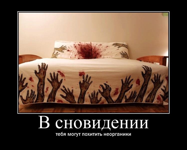 https://i6.imageban.ru/out/2021/07/17/949f7739cad78d9e667746ed25ba77f5.jpg
