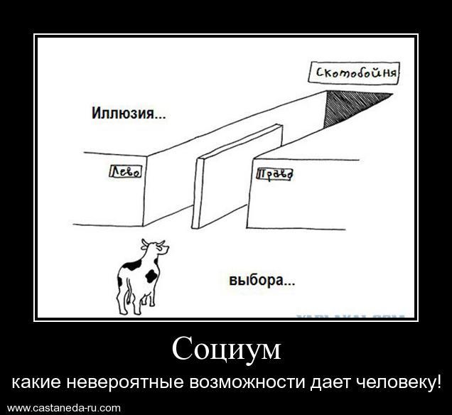 https://i6.imageban.ru/out/2021/07/17/9872bd555f5d1286cfac5f722bf43bbc.jpg