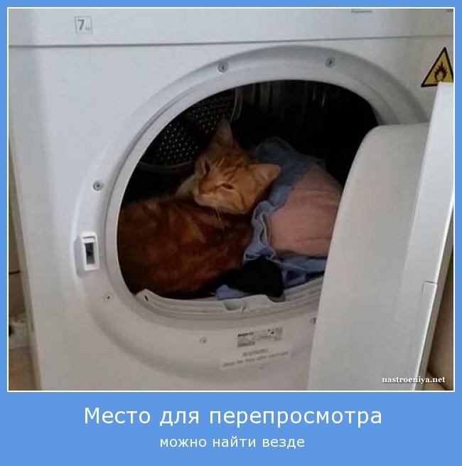 https://i6.imageban.ru/out/2021/07/17/99d3232877bba32b1a1218ef6c9d267e.jpg