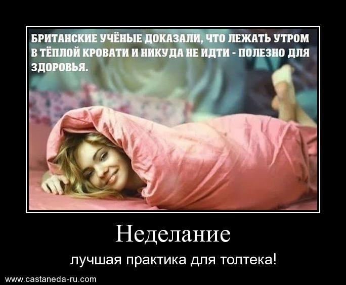 https://i6.imageban.ru/out/2021/07/17/9b1345040d855d3749750eb7a1e8ff37.jpg