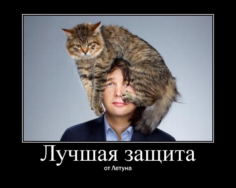 https://i6.imageban.ru/out/2021/07/17/a14bc2b0b3d31520ec66cecf79ee6489.jpg