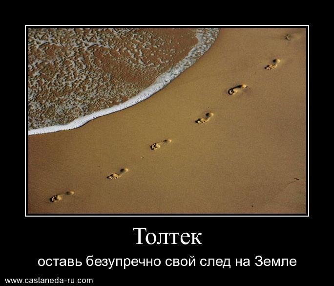 https://i6.imageban.ru/out/2021/07/17/a3271cd973a3be948f94e24b64905391.jpg