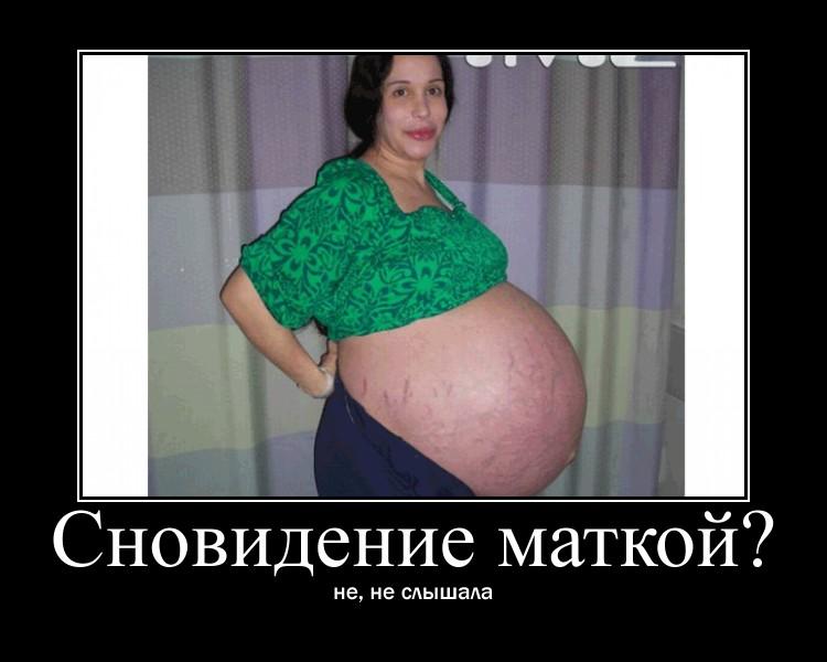 https://i6.imageban.ru/out/2021/07/17/a56e883bd0ca7aac7cb19f2379406b77.jpg