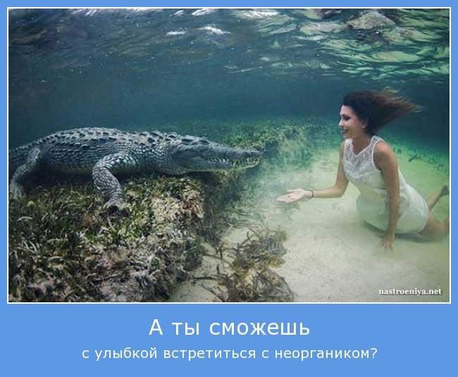 https://i6.imageban.ru/out/2021/07/17/bcd5a79572cb10b37ce34b199d5b603a.jpg