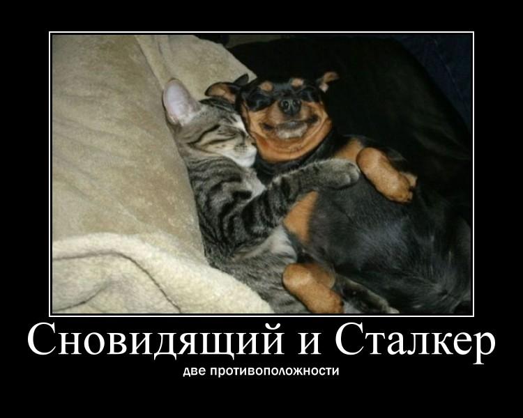 https://i6.imageban.ru/out/2021/07/17/c04b2175b12fa09420a4b43a506b1028.jpg