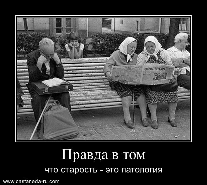 https://i6.imageban.ru/out/2021/07/17/c925d59381f9be9dc7ba5c7b815dc109.jpg