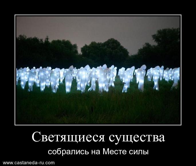 https://i6.imageban.ru/out/2021/07/17/c9596c107a8e74292af9610470f57fe7.jpg