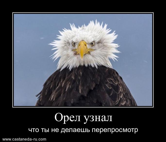 https://i6.imageban.ru/out/2021/07/17/cb140df5f7983c34f42f0bd967acad3c.jpg