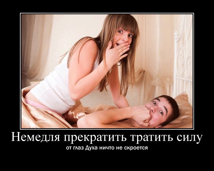 https://i6.imageban.ru/out/2021/07/17/cbf0a999fc0354379868718106be733c.jpg