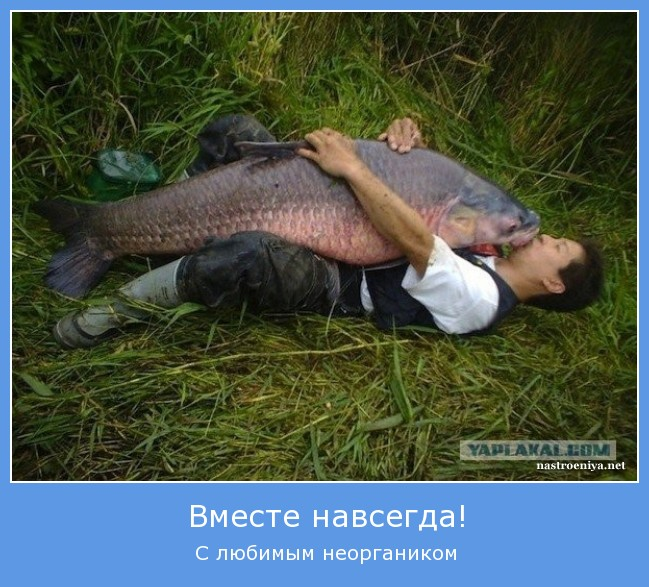 https://i6.imageban.ru/out/2021/07/17/cf2322192f0e41a54f352e948880685d.jpg