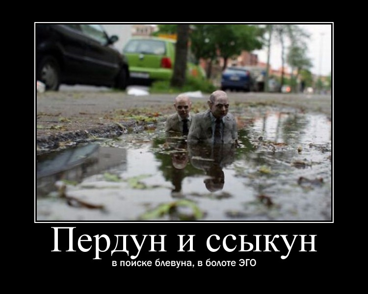 https://i6.imageban.ru/out/2021/07/17/d23355370e50b26dd62c4662218a06d6.jpg