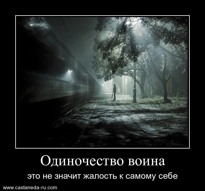 https://i6.imageban.ru/out/2021/07/17/d98fdef6926c73ac1331e4eba220ef04.jpg
