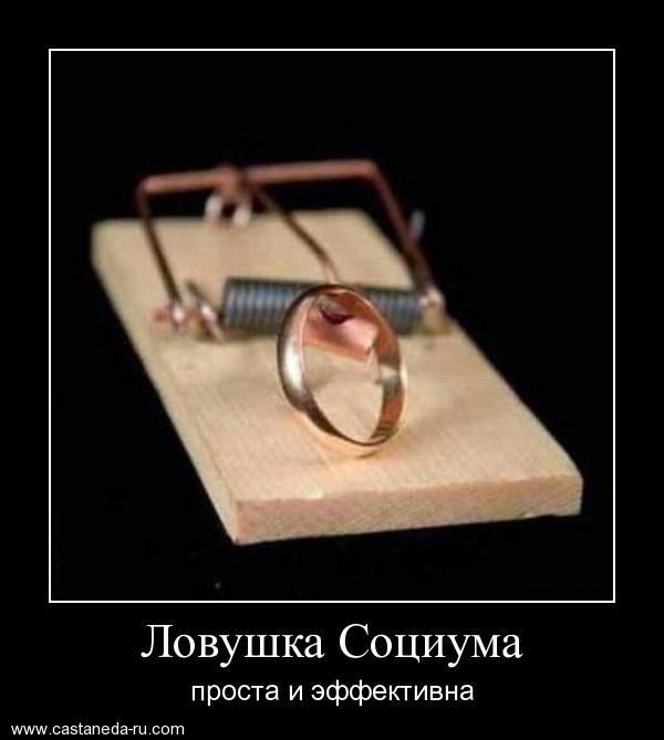 https://i6.imageban.ru/out/2021/07/17/dccb6d1241e0a47418c4c67a28ab0fac.jpg