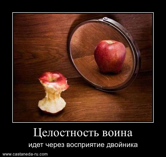 https://i6.imageban.ru/out/2021/07/17/e03a8632cc02531070b964476e5c88c2.jpg