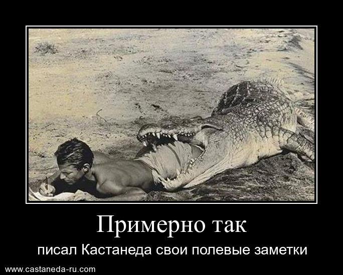 https://i6.imageban.ru/out/2021/07/17/e1713a63ce6a86b3048096228550d092.jpg