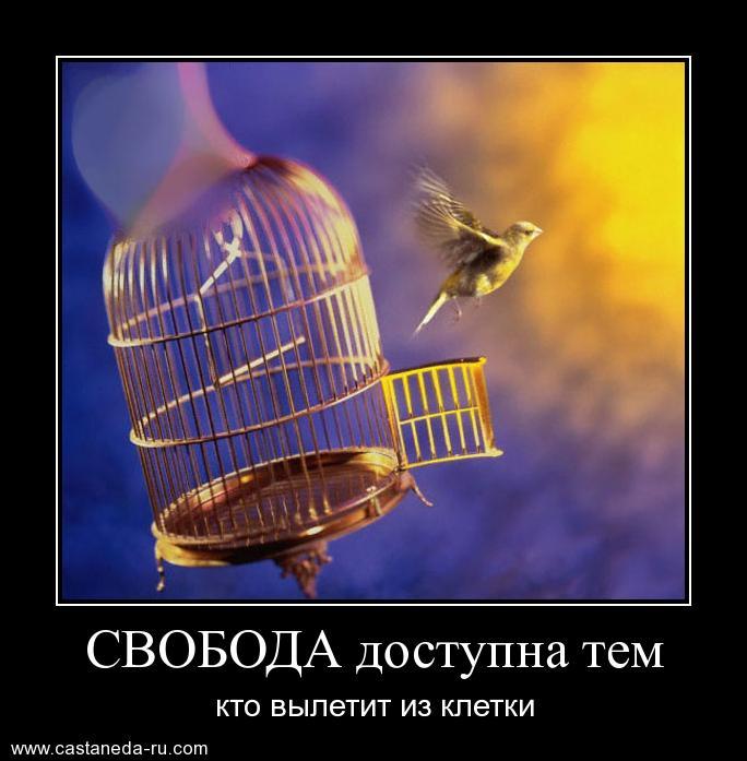 https://i6.imageban.ru/out/2021/07/17/e6cb7eaae5c17de2f6731cf0137a9428.jpg