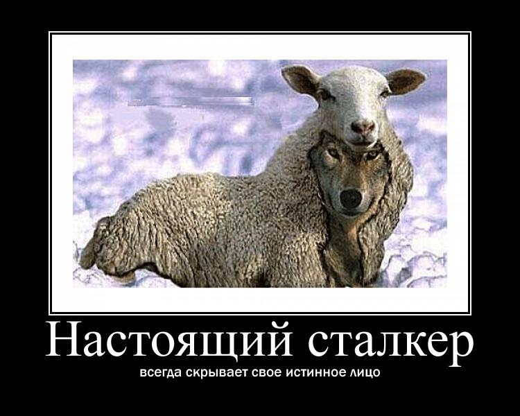 https://i6.imageban.ru/out/2021/07/17/fb1a7d23726756f13b6ac4a3a3d054d9.jpg