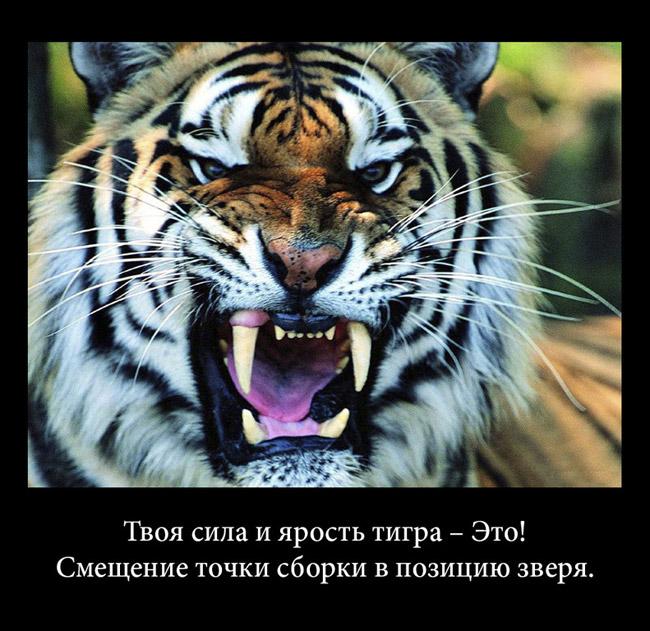 https://i6.imageban.ru/out/2021/07/17/fce8b2473810326046ec6fc6e40d7f4d.jpg