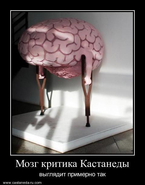https://i6.imageban.ru/out/2021/07/17/ff26ff841108766f365eba5a72498a17.jpg