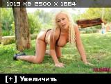 http://i6.imageban.ru/thumbs/2013.06.23/36f4a852975c7f09ae4c0a1769b9b2ef.jpg