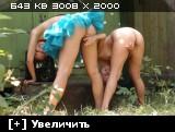 http://i6.imageban.ru/thumbs/2013.07.03/554defdefafc81c8a4f7a47a19343268.jpg
